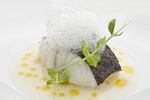 Menú Degustación Restaurante Auga Pescado