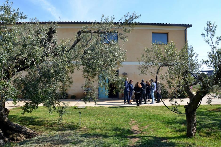 Vinyes del Terrer DO Tarragona Soplos Viajeros