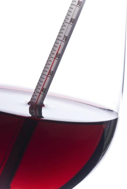 Tips servicio vino sommelier Javier Campo